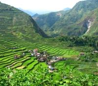 Village & Rice Terraces