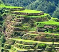 Banue Rice Terraces