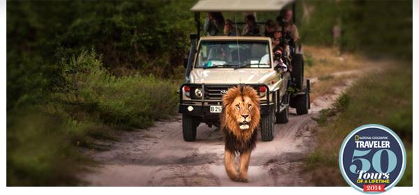 Trips Legends Are Made Of - Greece, Peru, Oz, Thailand, South Africa & More