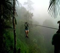 Ziplining in the cloudforest
