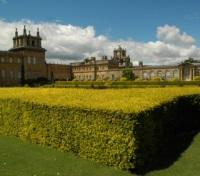 Exclusive access to Blenheim Palace