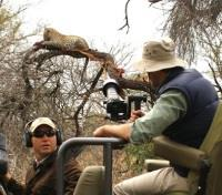 Londolozi Photographic Safari