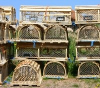Lobster traps in Lunenburg
