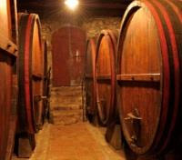 Tuscany Highlights Tours 2018 - 2019 -  Montepulciano Cellar
