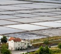 Historic Saltpans of Ston