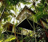 Daintree Eco Lodge & Spa - Cabin