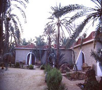 Outside Siwa Paradise