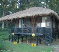 Temple Tiger Jungle Lodge
