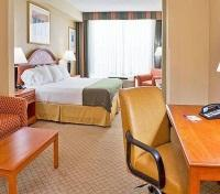 Holiday Inn Busch Gardens Room