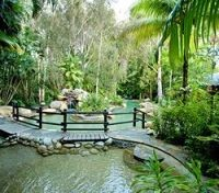 Kewarra Beach Resort  Garden Area