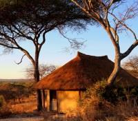 Little Olivers Tented Camp