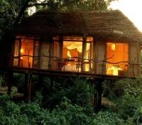 Tree House at Lake Manyara Tree Lodge
