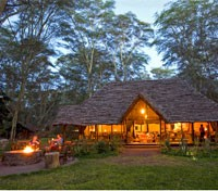 Migunga Forest Camp - Main Lodge
