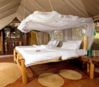 Migunga Forest Camp - Standard Tent Room
