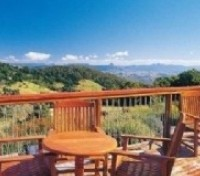 Gold Coast: O'Reilly's Ranforest Retreat