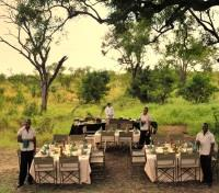Outdoor Bush Dining
