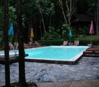 Fern Resort - Pool
