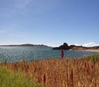 Walking along Lake Titicaca