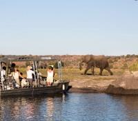 Zambezi Queen Game Viewing
