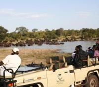 Tintswalo Safari Lodge Activities