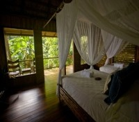 Bosque del Cabo Rainforest Lodge2