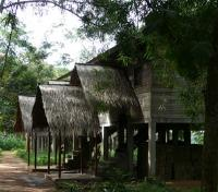 Doli Lodge, Bayanga