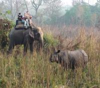 Elephant Ride at Narayani Safari Resort