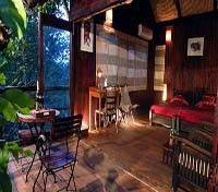 Tiger Trails Resort Tree House Interior