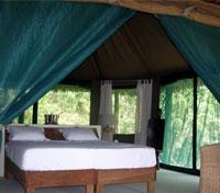 Selous Wilderness Camp - Standard Tent Room
