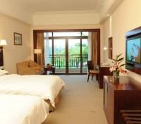 Standard River View Room