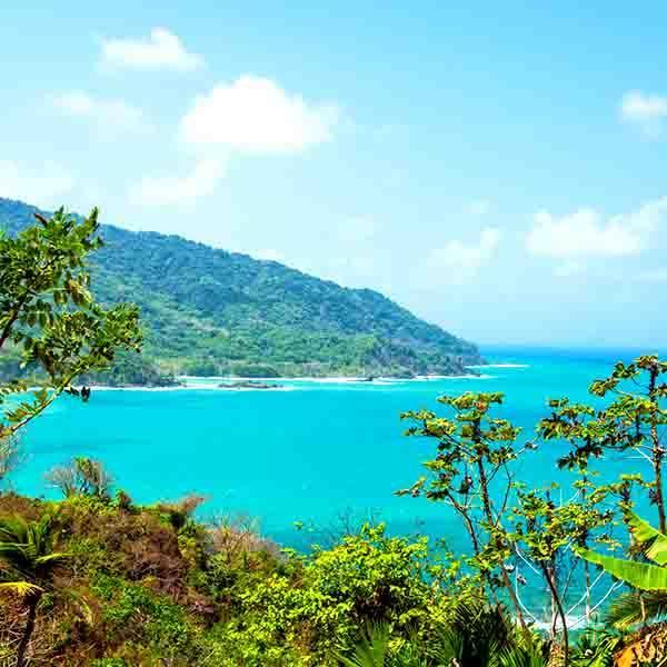 Caribbean Islands: Cloudforest & Caribbean Islands