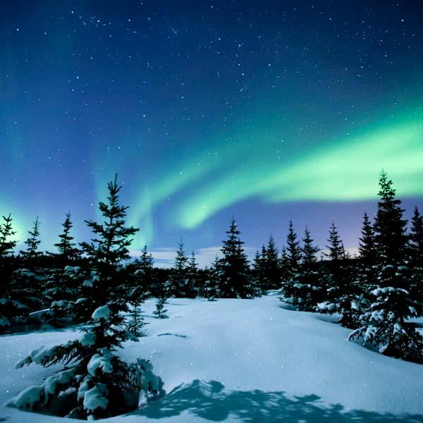 Norwegian Lapland Amp Northern Lights Discovery Norway