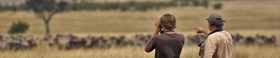 Game Viewing during Migration Season