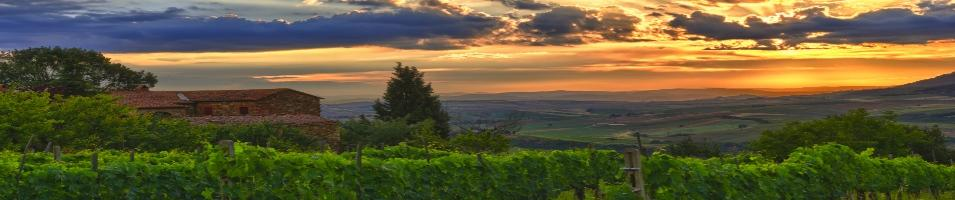 Luxurious Tuscany Tours 2018 - 2019 -  Tuscany