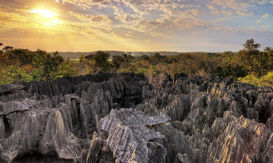 Madagascar Tours 2017-2018 Get your heart pumping with a visit to the Tsingys.