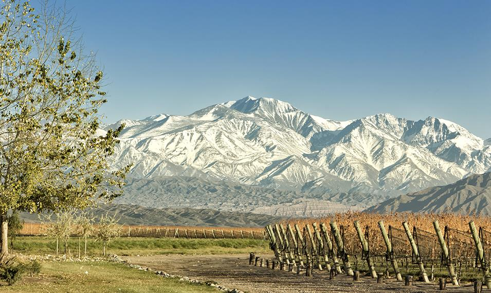 Taste your way through the vineyards of Mendoza.