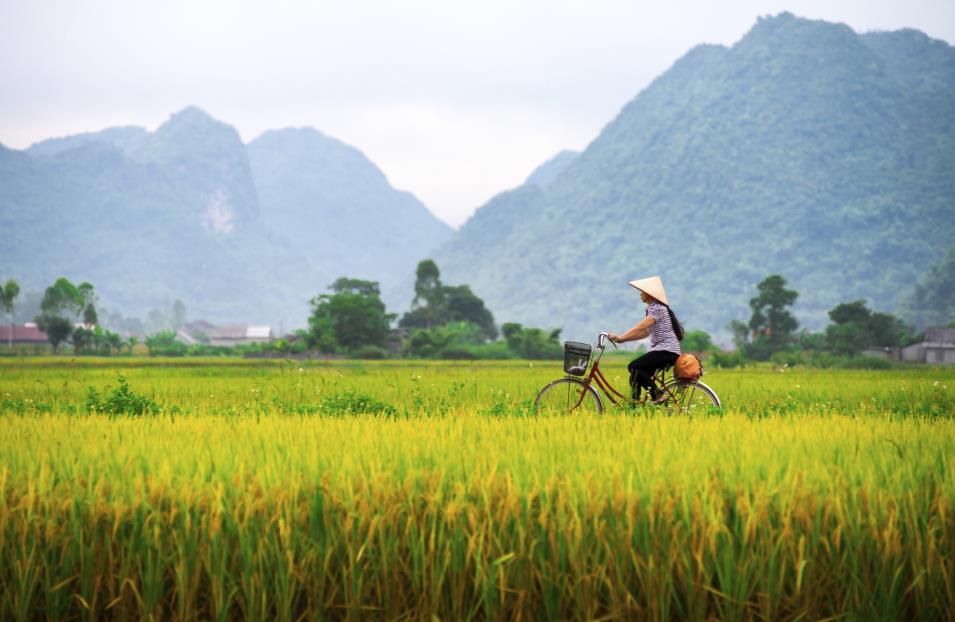 Vietnam Tours 2017-2018 Cycling through Sapa.