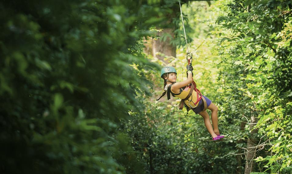 Get your adrenaline pumping as you zip line through the treetops.