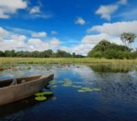 Mokoro Canoe in the Linyanti Marshlands