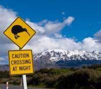 Kiwi Crossing at Mount Ruapehu