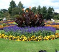 Small Group Tour: 2018 Chelsea Flower Show Tours 2017 - 2018 -  Kew Gardens