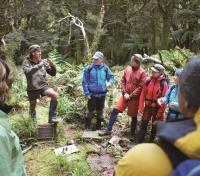 Active New Zealand: Auckland, Lake Taupo & Fjordland Tours 2017 - 2018 -  Guide Explains Local Fauna and Flora