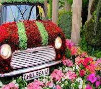 Small Group Tour: 2018 Chelsea Flower Show Tours 2017 - 2018 -  Chelsea Flower Show