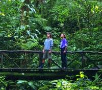 Costa Rica Off The Beaten Path Tours 2018 - 2019 -  Rainforest Exploration