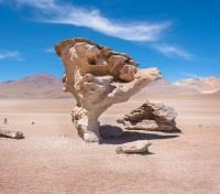 Peru, Bolivia and the Atacama Desert Tours 2019 - 2020 -  The Stone Tree