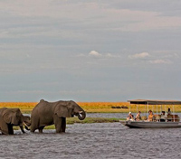 Victoria Falls to the Okavango Delta Tours 2019 - 2020 -