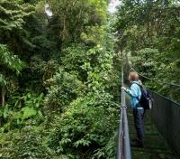 Costa Rica Eco-Luxury Adventure Tours 2018 - 2019 -  Hanging Bridges in Arenal