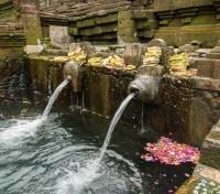 Bali Off the Beaten Track Tours 2019 - 2020 -  Tirta Empul Temple - Holy Spring