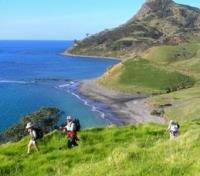 New Zealand Grand Tour Tours 2017 - 2018 -  Hiking on Coromandel Peninsula