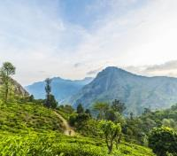Sri Lanka Signature Tours 2019 - 2020 -  Ella Highlands Hike